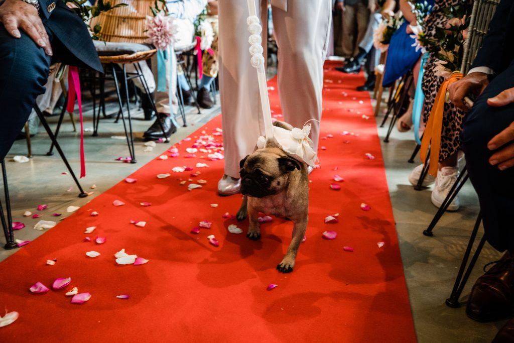 ringen ceremonie bruiloft